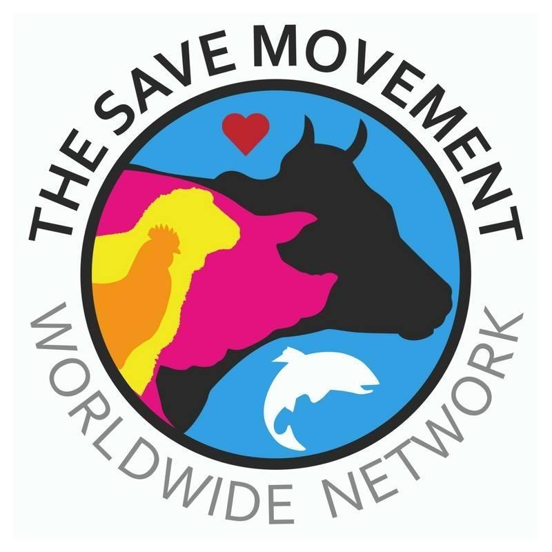 Memorandum of Understanding - The Save Movement
