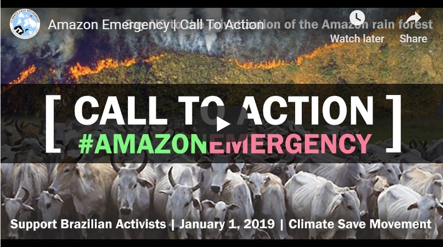 Climate Save Amazon petition