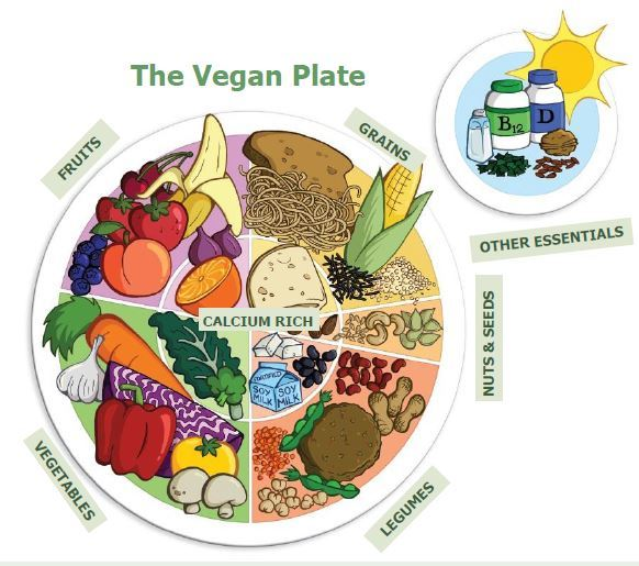 vegan_power_plate