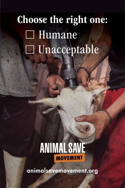 Choose humane or unacceptable ASM placard