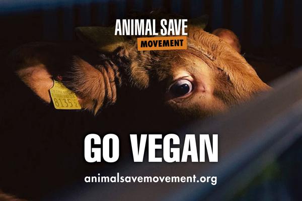 Go Vegan ASM placard