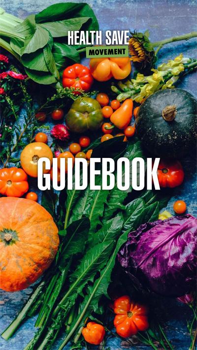HSM guidebook English