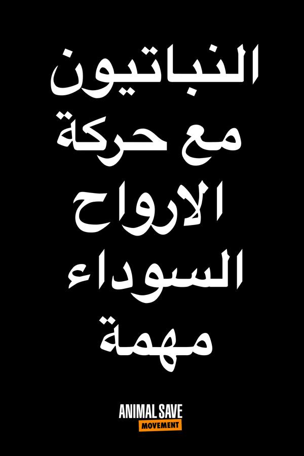 Arabic BLM placard 6