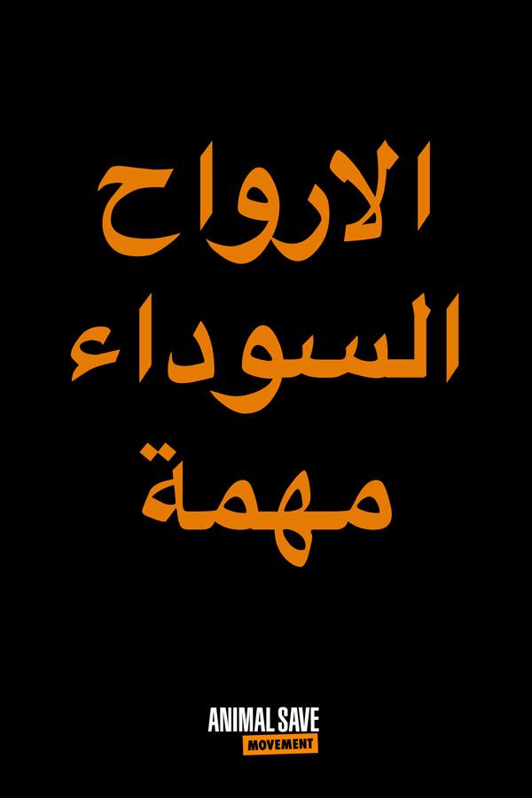 Arabic BLM placard 7