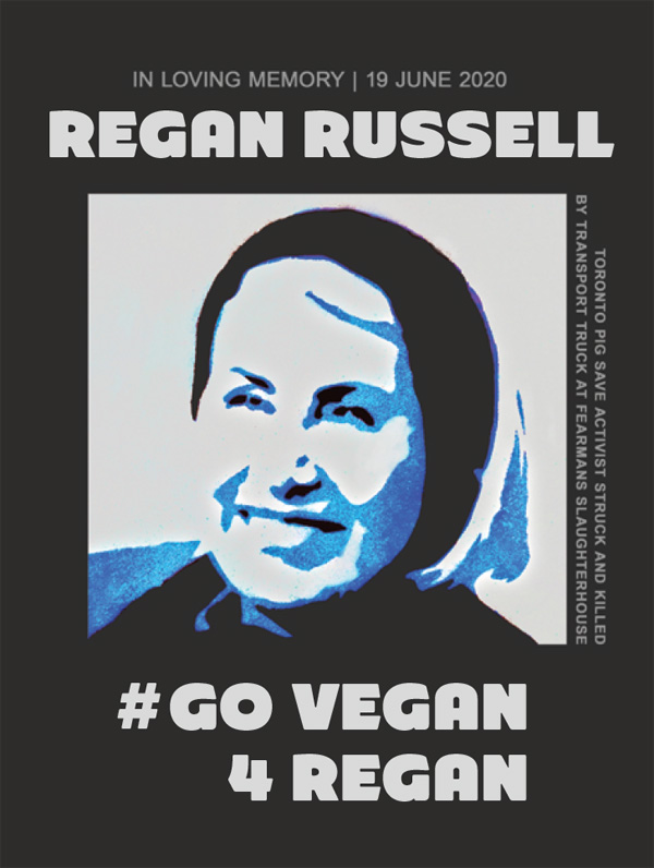 Go Vegan for Regan sticker