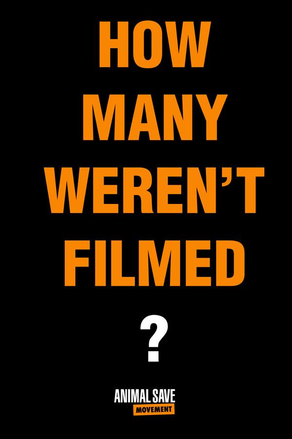 How Many Weren't Filmed?