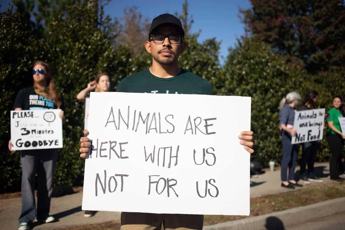 Atlanta Animal Save