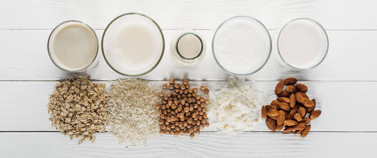 plant based dairy alternatives