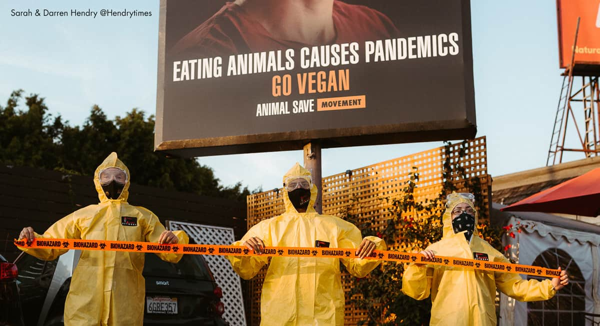 human deaths linked to Zoonoses